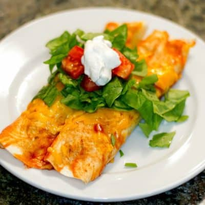 Grilled Vegetable Enchiladas