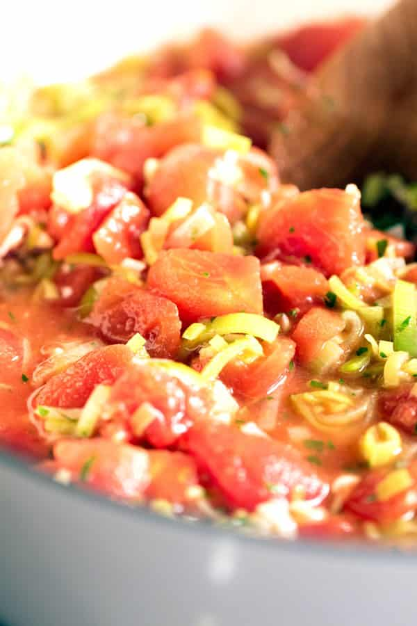 close-up photo of tomatoes and leek in a pot