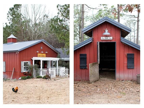 Ray Family Farms | girlgonegourmet.com