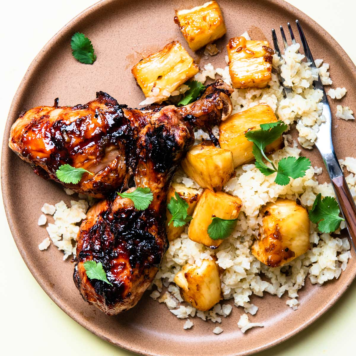 overhead shot of the chicken and pineapple with rice.
